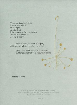 [The most beautiful thing] / Thomas Meyer: James Walsh
