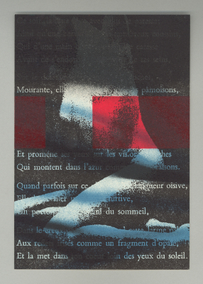 Baudelaire Over Rosenquist / Jan Hartley