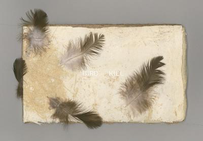 Bird Kill / Mary Ellen Long